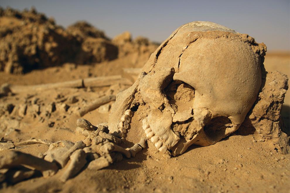 A Human ExtinctionButton