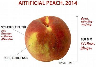 modern-peach